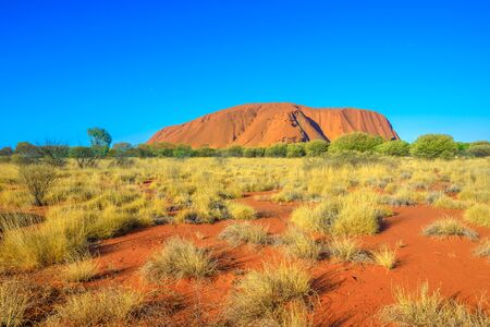 Foto de Red sand of Australian outback at Ayers Rock in dry season, huge sandstone monolith in Uluru-Kata Tjuta National Park, central Australia, Northern Territory. Icon of Red Centre. Blue sky, copy space. - Imagen libre de derechos