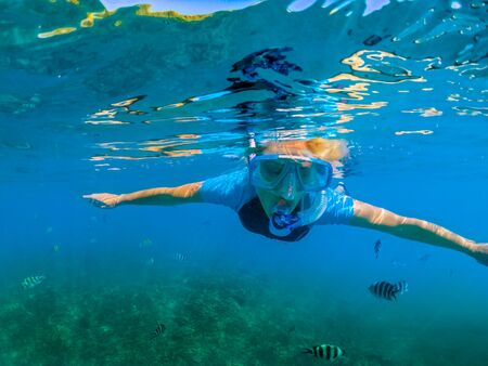 Photo pour Portrait of female in wetsuit apnea at Seychelles, Indian Ocean. Travel lifestyle watersport activity. Young caucasian woman snorkeling in tropical turquoise sea. Woman free diving swims in coral reef - image libre de droit