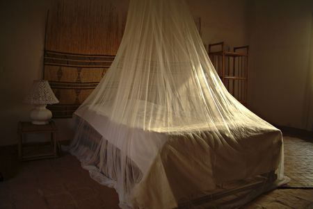 A room in Africa with the mosquito net