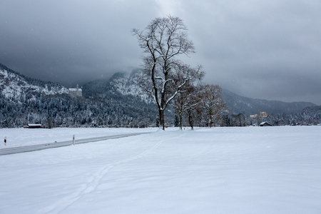 Winter in Bavaria - Neuschwanstein Castle.
