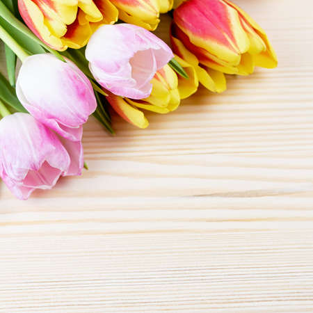 Photo pour Red and pink tulips on wooden background closeup - image libre de droit