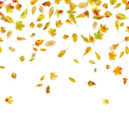 Ilustración de Falling autumn leaves in EPS 10 vector - Imagen libre de derechos