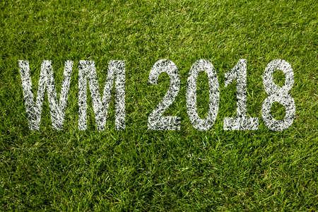 wm 2018  championship 2018  on green grass