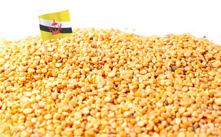 Photo pour Brunei flag sticking in a bunch of peas. The concept of export and import of peas - image libre de droit
