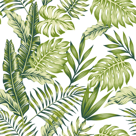 Illustration for Pastel green tropical jungle leaves palm banana white background seamless pattern composition - Royalty Free Image