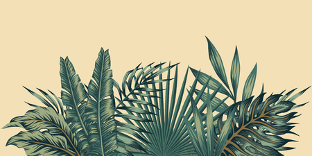 Illustration for Jungle exotic composition tropical leaves pattern vintage green invitation holiday banners with palm - Royalty Free Image