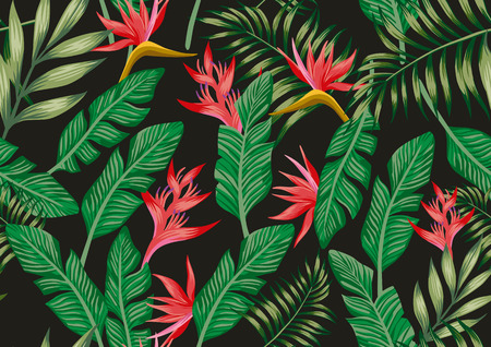 Illustration pour Exotic botanical pattern bird o paradise flowers and tropical palm leaves seamless. Black background vector A4 style wallpaper - image libre de droit
