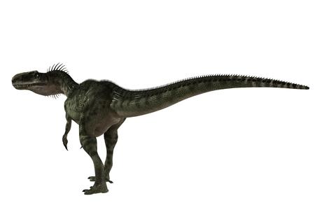 Monolophosaurus - dinosaur