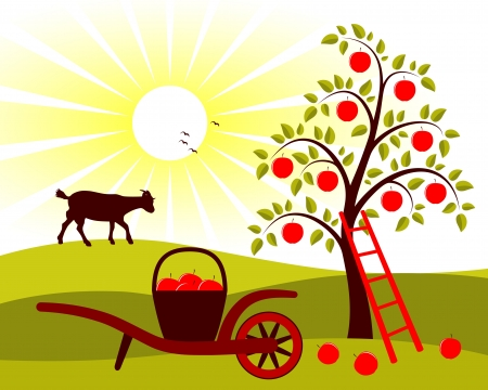vector apple tree and hand barrow with basket of apples