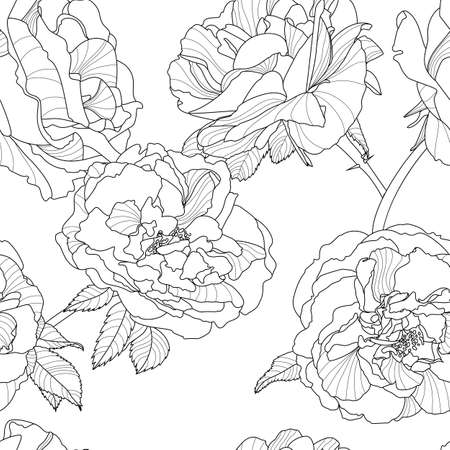 Vector Floral Seamless Pattern Black And White Background With