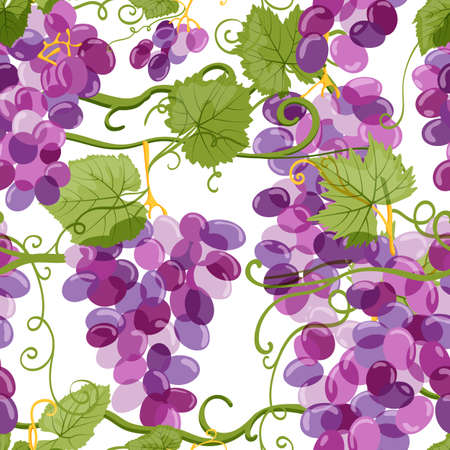 Ilustración de Vector grapes seamless pattern. Vineyard hand drawn illustration on white background. Fresh hand drawn grape with green leaves. Design elements for wine label or packaging. - Imagen libre de derechos