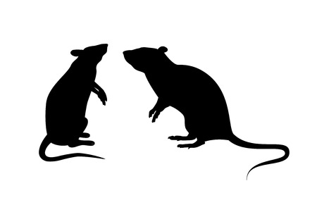 Illustration pour Two rats silhouette vector. Standing rat icon vector. Rats isolated on white background. Mouse clip art - image libre de droit