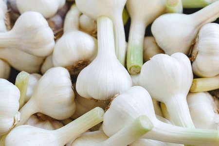 Foto für Fresh raw organic garlic as a background. Garlic for sale at farmers market or shop. Stock photo garlic as a food background - Lizenzfreies Bild