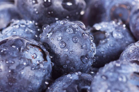 Closeup of fresh blueberries isolated on a white background