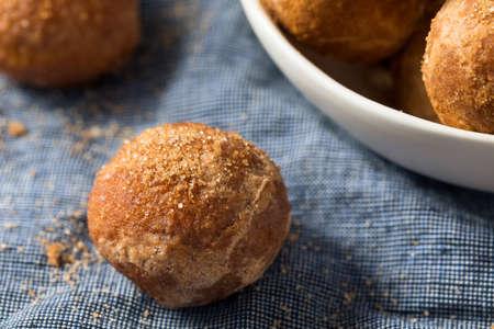 Photo pour Homemade Fried Cinnamon Sugar Donut Holes Ready to Eat - image libre de droit