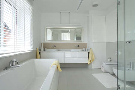 Bathroom interior in modern and stylish house