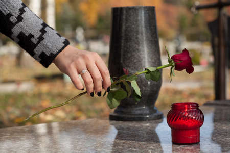 Woman's hand laying red rose on grave