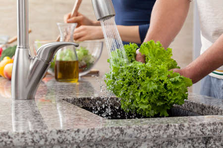 Washing a fresh lettuce for salad in sink , in the kitchen