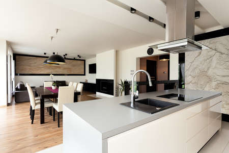 Urban apartment - bright house interior with black additions