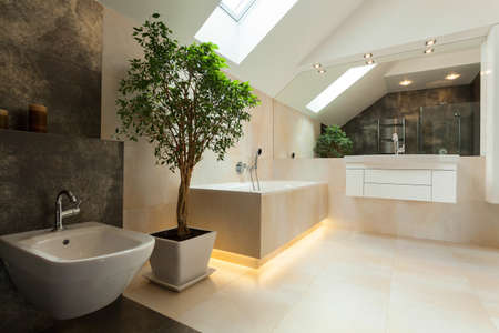 Interior of modern bathroom in new house