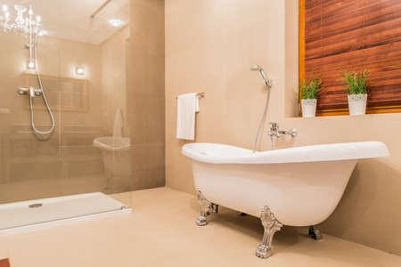 Modern design of new bathroom with glass shower and porcelain bathtub