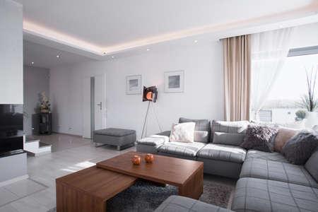 Contemporary design of spacious living room with big sofa