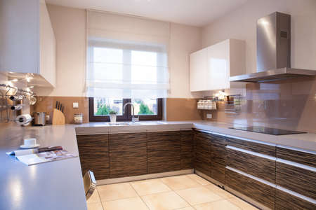 Modern brown furniture in beauty designed kitchen