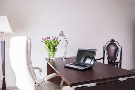Modern and elegant office in the house