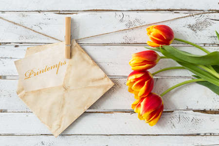 Yellow and red tulips and card in envelope hanging on thin rope, white wooden background