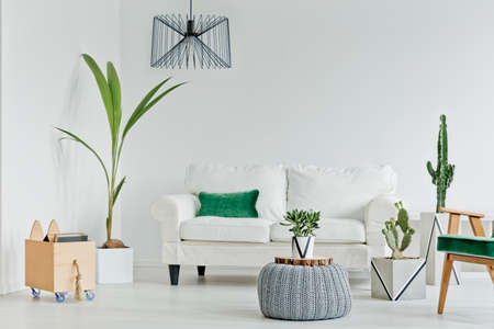 White living room with decorative houseplants, sofa and armchair