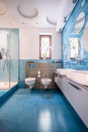 Spacious and modernly designed bathroom in blue