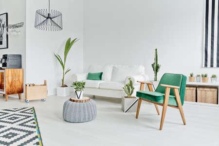 Foto de Spacious, well-lighted flat in scandinavian style - Imagen libre de derechos