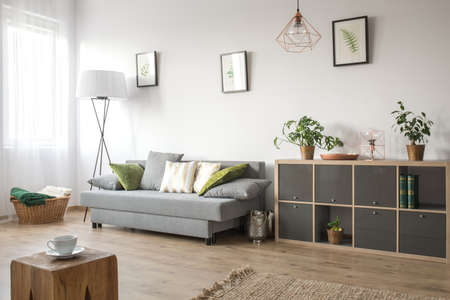 Cozy living room with sofa, bookcase and rug