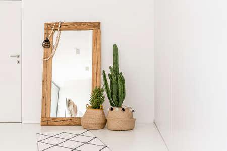 Photo pour Enormous mirror accompanied by plants in the living room - image libre de droit