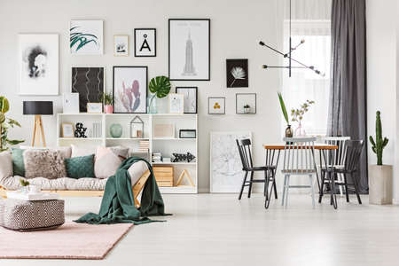 Foto de Chairs at dining table near a cactus in multifunctional interior with green blanket on the sofa and pouf on the rug - Imagen libre de derechos