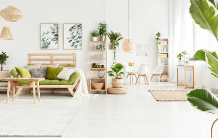 Plant on pouf next to shelves with kettle and vase in natural living room interior with table and green settee with pillows