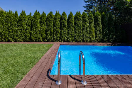 Swimming pool in the garden with trees and green grass during summer. Real photo