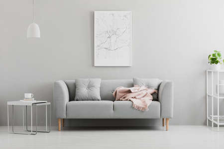 Poster above grey sofa with pink blanket in living room interior with white lamp and plant. Real photo