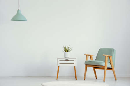 Plant on cabinet next to green wooden armchair in flat interior with lamp and copy space. Real photo