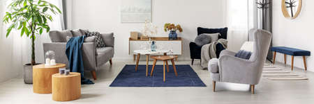 Photo pour Elegant white, grey and blue living room interior with scandinavian sofa and velvet armchair - image libre de droit