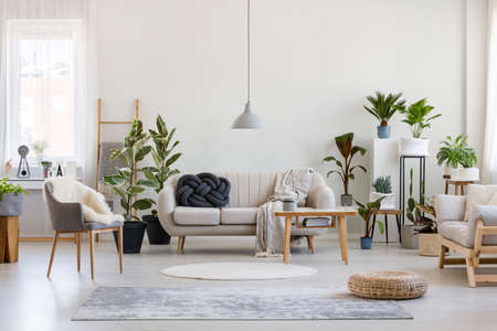 Photo for Urban jungle in trendy living room interior with white couch with black knot pillow and wooden furniture, copy space on empty wall - Royalty Free Image