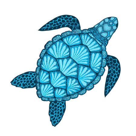 Illustration pour Sea turtle in line art style. Hand drawn vector illustration. Top view. Design for coloring book. - image libre de droit