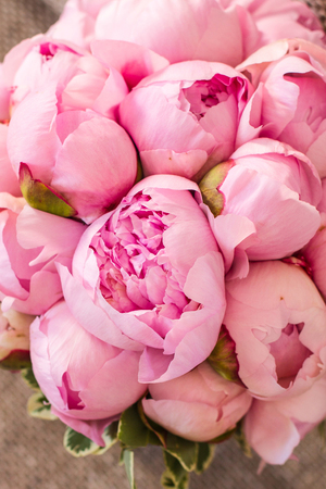 Photo for wedding bouquet of pink peonies - Royalty Free Image