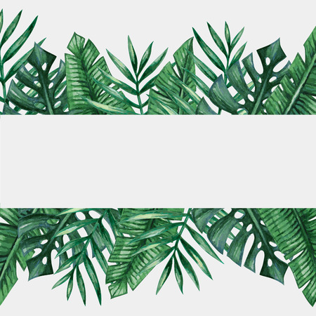 Illustration for Palm tree leaves background template. Tropical greeting card. - Royalty Free Image