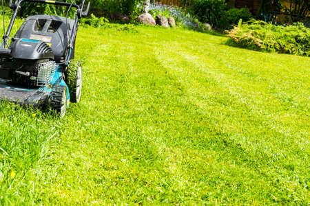 Photo for Mowing lawns, Lawn mower on green grass, mower grass equipment, mowing gardener care work tool, close up view, sunny day - Royalty Free Image