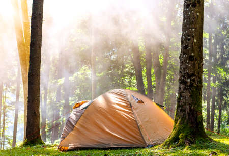 Camping tent in green forest in spring sunny morning with fog haze among trees. Recreation concept. Soft light vintage effect.