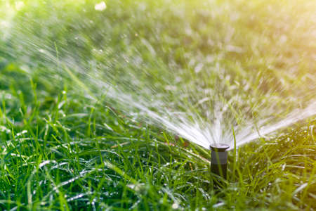Photo pour Lawn water sprinkler spraying water over lawn green fresh grass in garden or backyard on hot summer day. Automatic watering equipment, lawn maintenance, gardening and tools concept. - image libre de droit