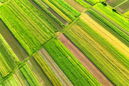 Photo pour Aerial view of green agricultural fields in spring with fresh vegetation after seeding season on a warm sunny day. - image libre de droit