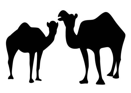 Photo pour The silhouette of two camels - image libre de droit