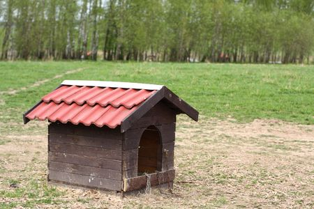Nice doghouse without a dog in country farm at summer time